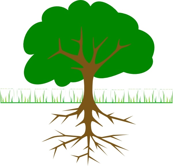 Roots clipart tree illustration Branches in Free Tree art