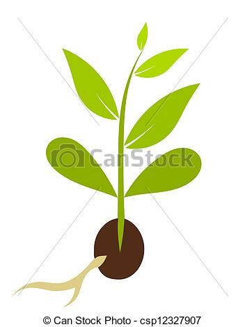 Soil clipart tree sprout From csp12327907 growing plant