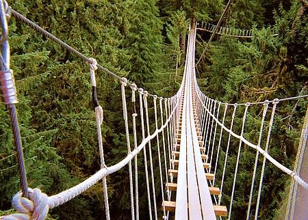 Rope Bridge clipart high rope #4