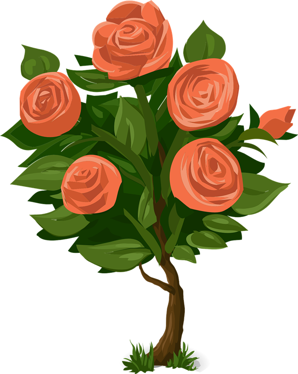 Rose Bush clipart Rose Clipart Bush Clip Bush