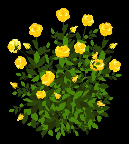 Rose Bush clipart Yellow ClipArt PNG Picture Bush