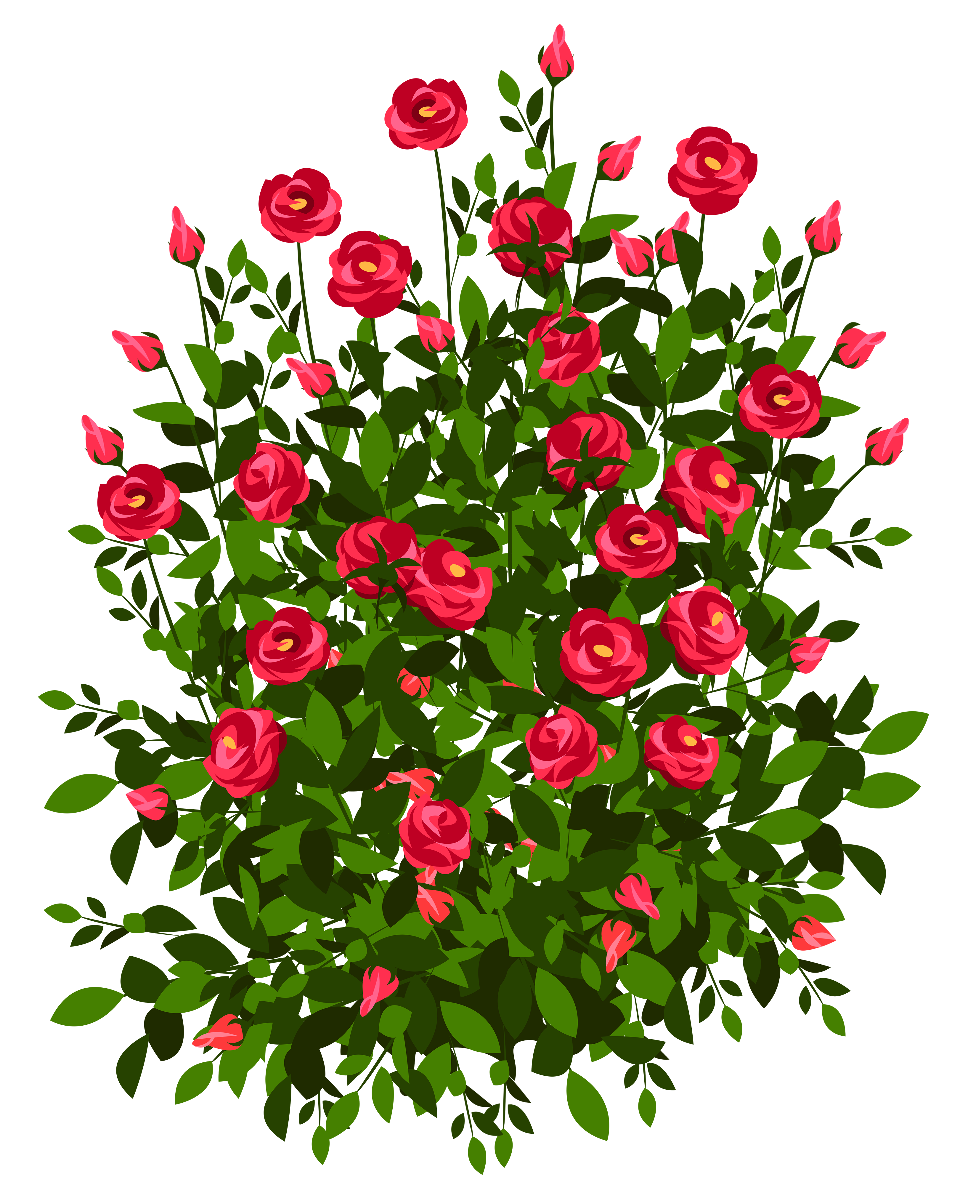 Drawn rose bush flower clipart #19 Rose Rose drawings clipart