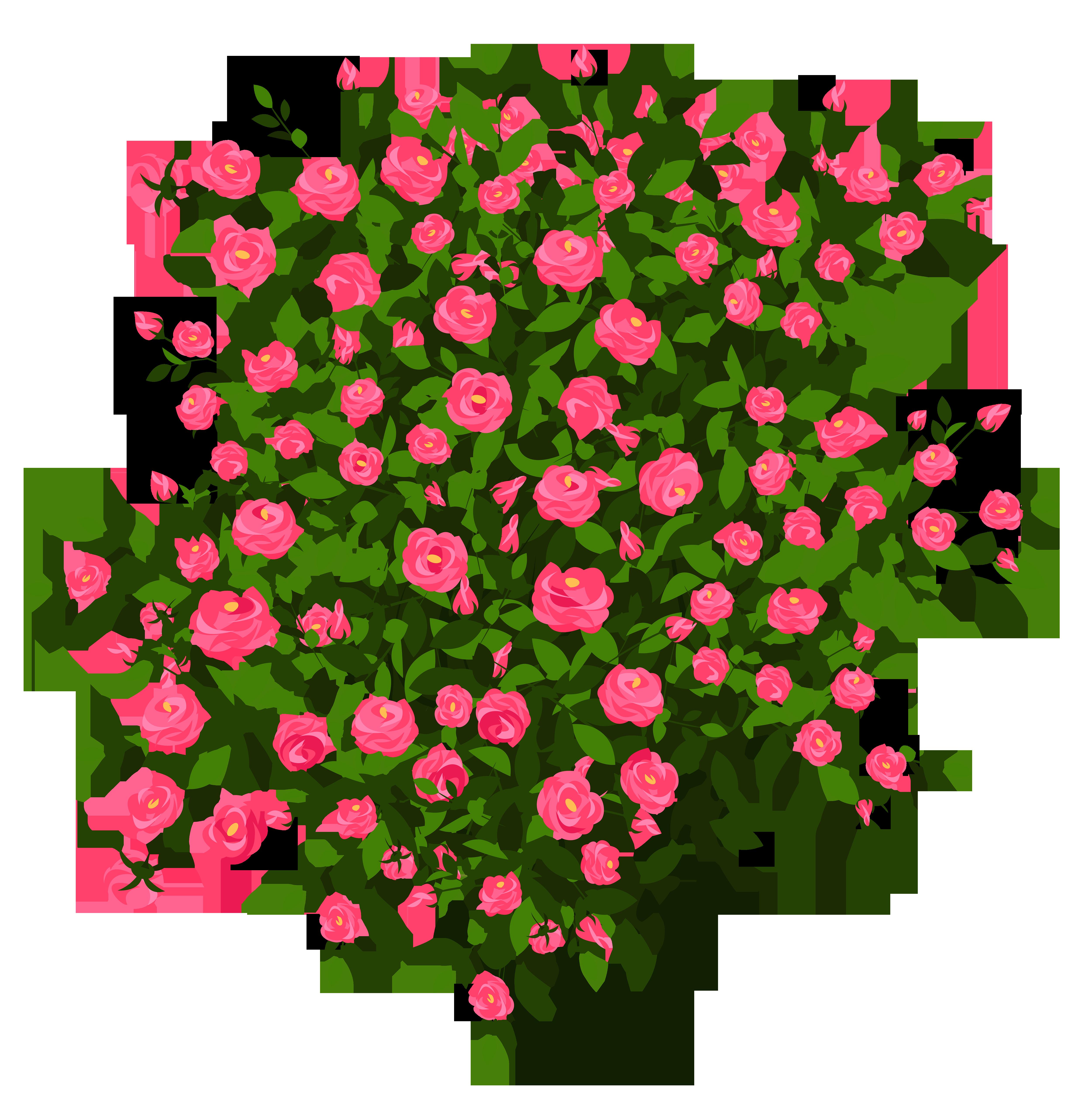 Pink Rose clipart rose bush Bush drawings #16 clipart Rose