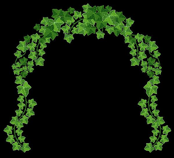 Ivy clipart decorative PNG Decorative Vine elements Clipart