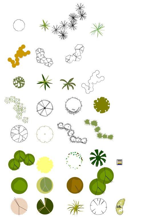 Rose Bush clipart shrub plan #12