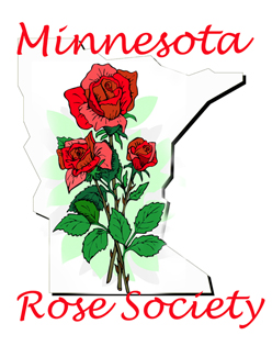 Rose Bush clipart shrub plan #10