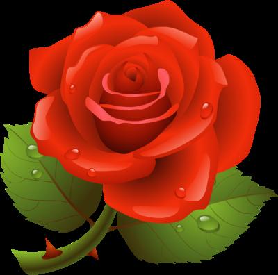Rose clipart Art wrinkle%20clipart Clipart Rose Panda