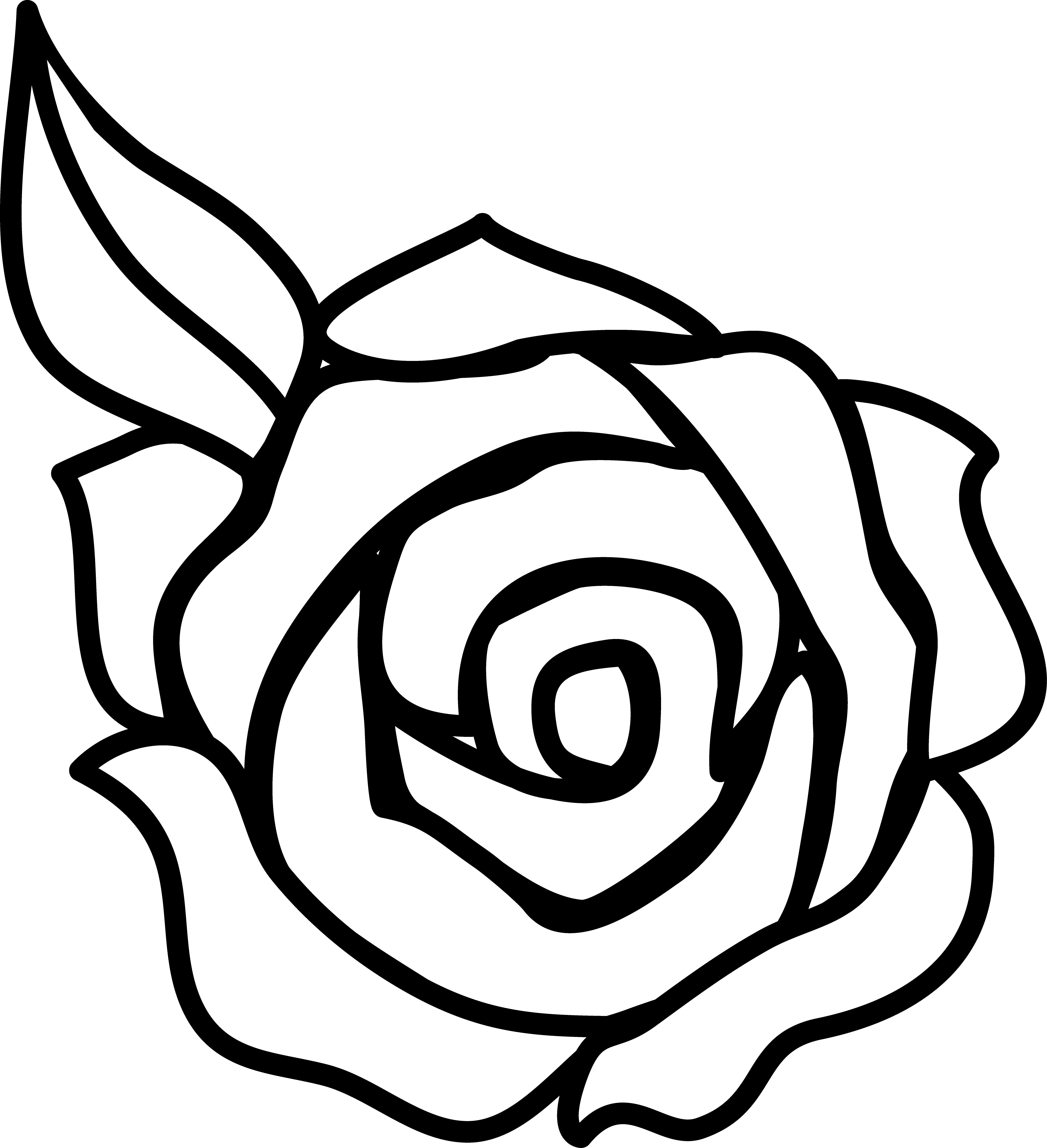 Drawn red rose black and white step by step Clipart Rose Rose Clip Art