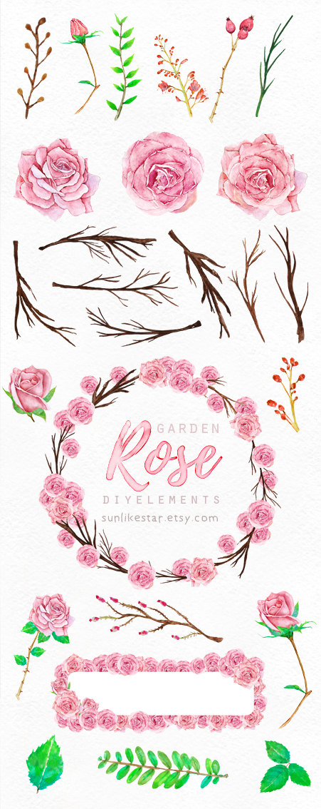 Rose clipart branch #10