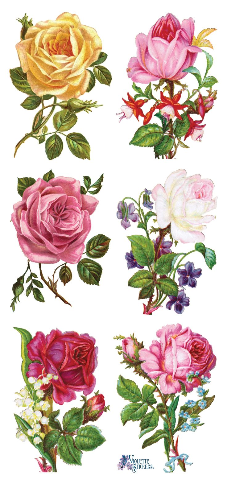 Rose clipart decal #12