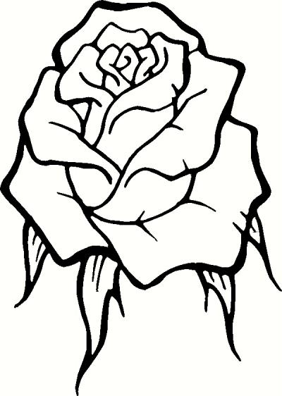 Rose clipart decal #7