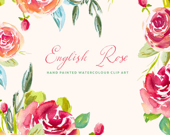 Rose clipart english rose #9