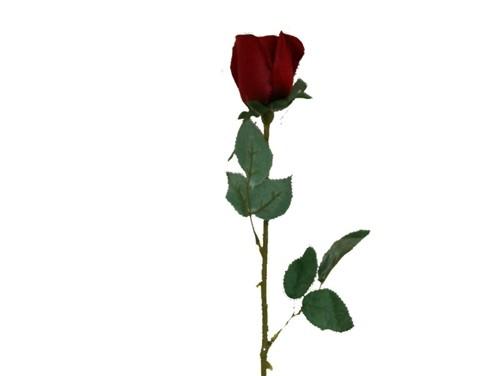 Rose clipart long stem rose #13