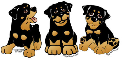 Drawn puppy rottweiler puppy You Cliparts rottweiler Puppy Rottweiler