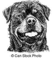 Rottweiler clipart black and white #15
