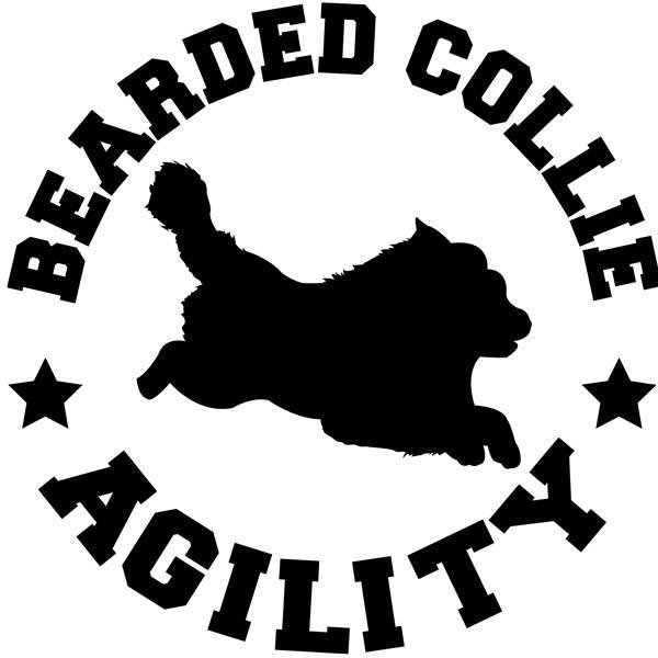 Rough Collie clipart agility #7