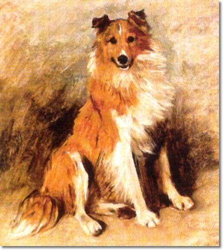 Rough Collie clipart farm dog #10