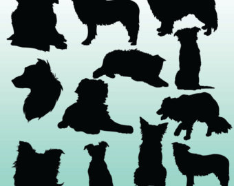 Border Collie clipart silhouette Clipart silhouette Etsy Elements Silhouettes