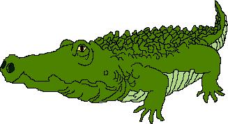 Alligator clipart transparent Clip Use to Domain Public