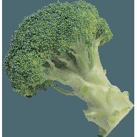 Sad clipart broccoli #7