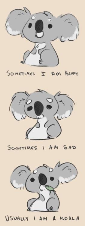 Sad clipart koala #11