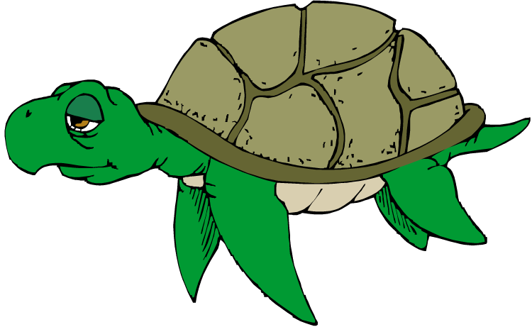 Sea Turtle clipart turtle swimming #7