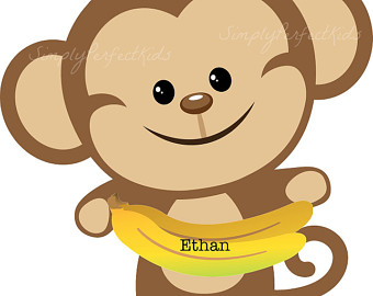 Turtle clipart baby monkey #8