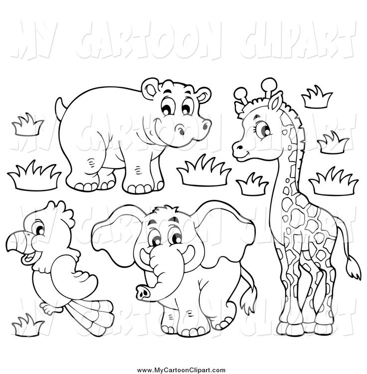Safari clipart black and white Cartoon images Elephant Of Best