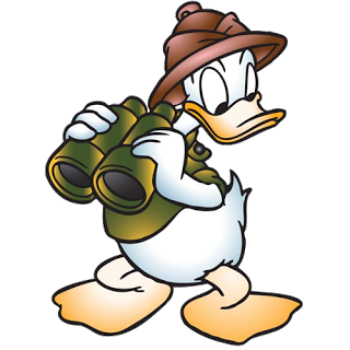 Safari clipart daisy duck #12