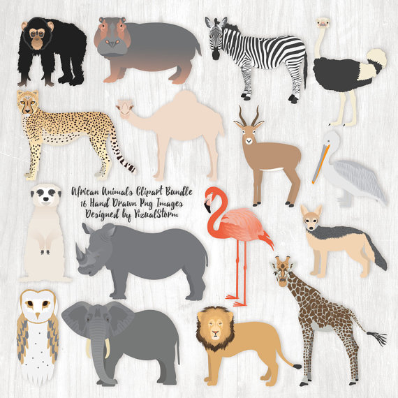 Wildlife clipart african wildlife Illustration Animal Scrapbook Bundle Animal