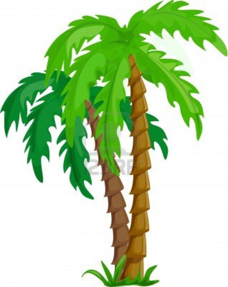 Drawn palm tree rainforest tree #1