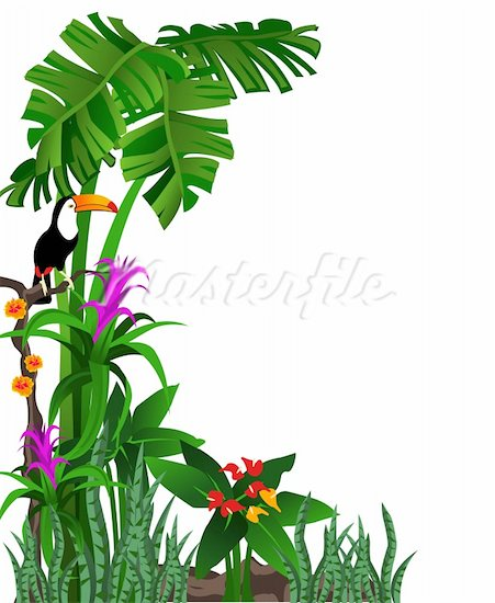 Toucanet clipart rainforest monkey #14
