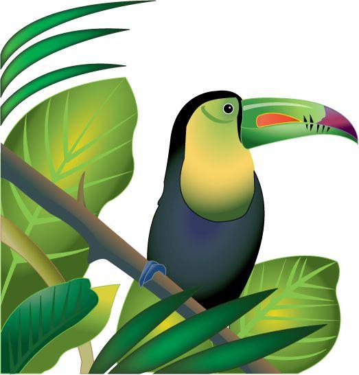 Tree Frog clipart rainforest plant #3