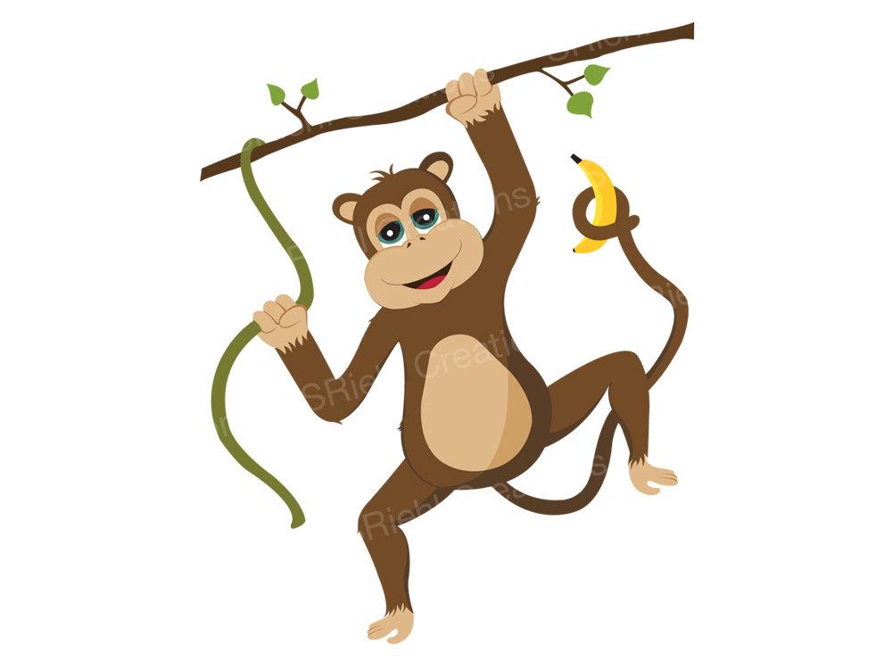 Safari clipart rainforest monkey Clipart clipart Monkey spider Fans