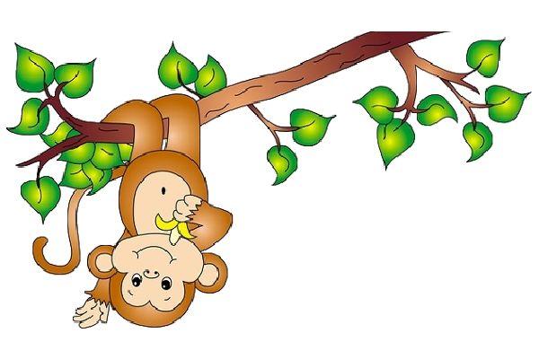 Zoo clipart jungle monkey – Art Art Clipart Jungle