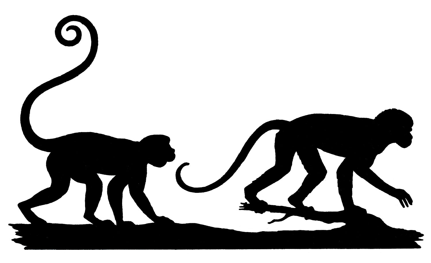 Shadows clipart monkey Art Silhouette and Monkeys Clipart