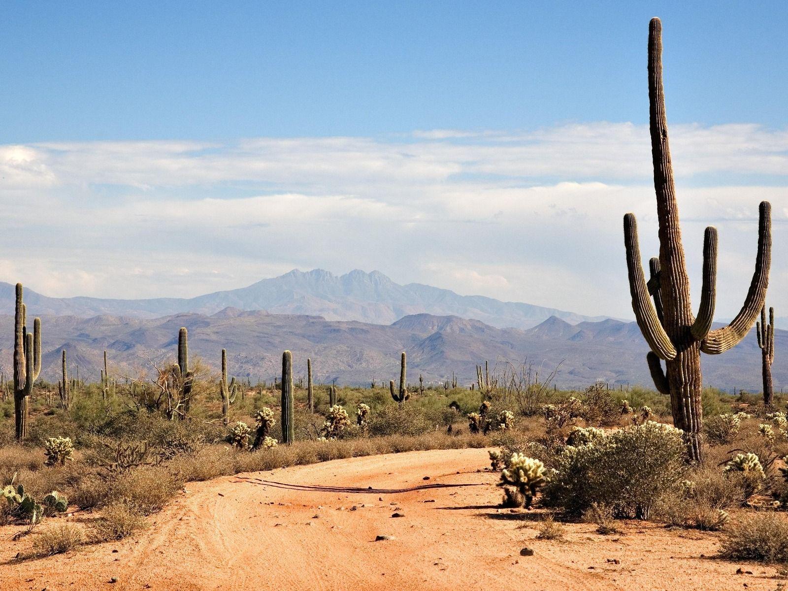 Sahara clipart desert mountain #3