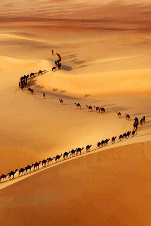 Sahara clipart pilgrimage to mecca #4