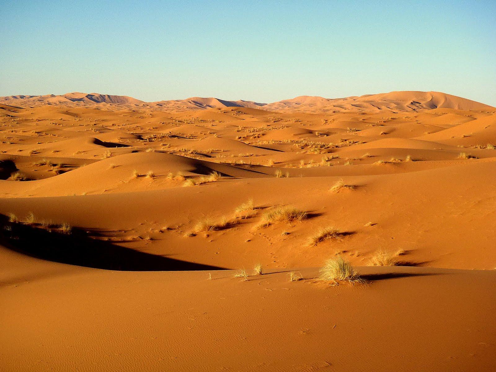 Sahara clipart saudi arabia #10