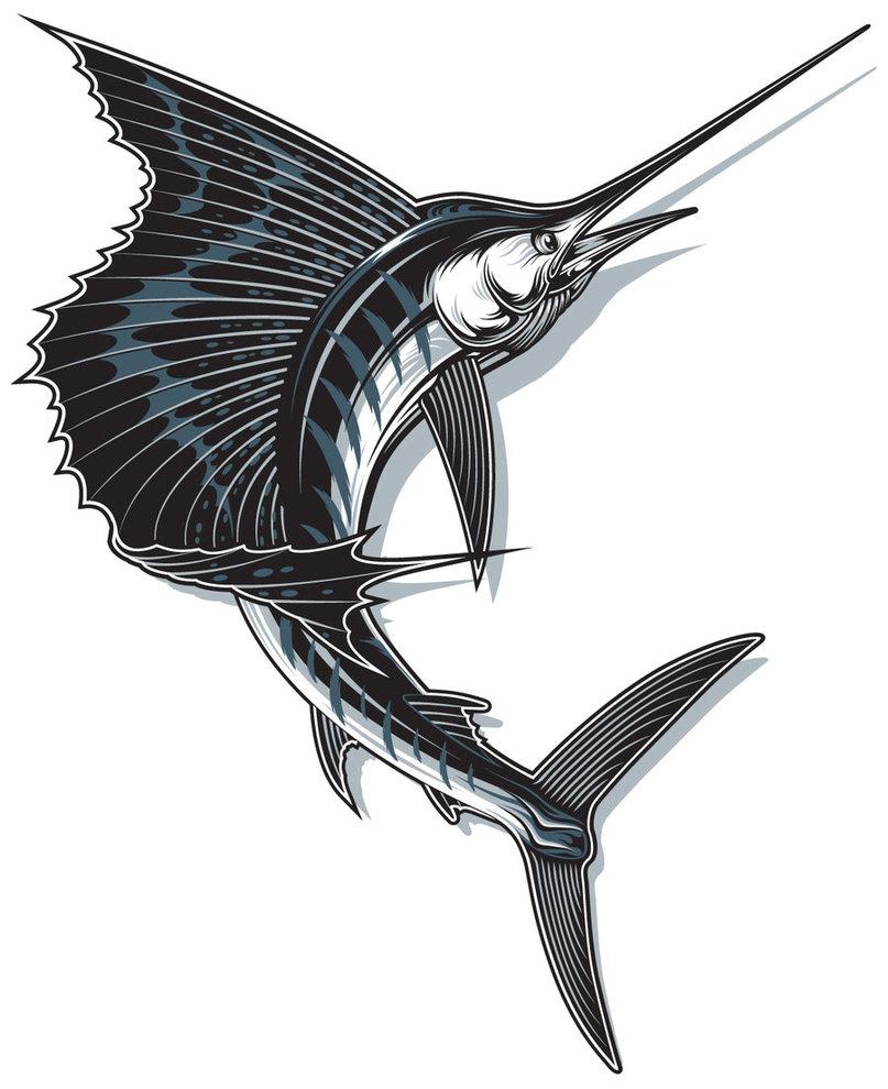 Sailfish clipart drawing #12