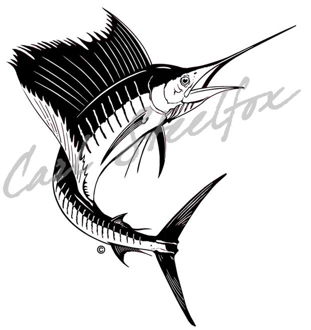 Sailfish clipart drawing #9