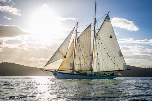 Sailing Ship clipart history subject Festival 2017 Ships Sail® Zodiac