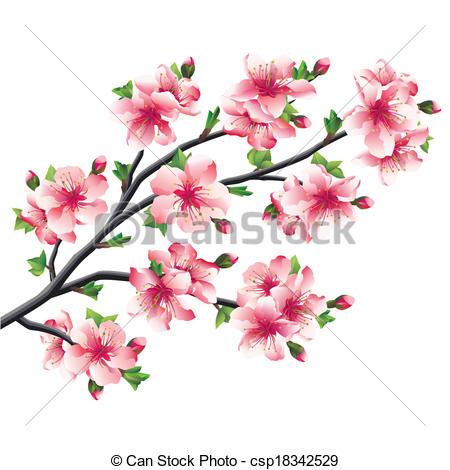 Sakura clipart japanese cherry blossom #3