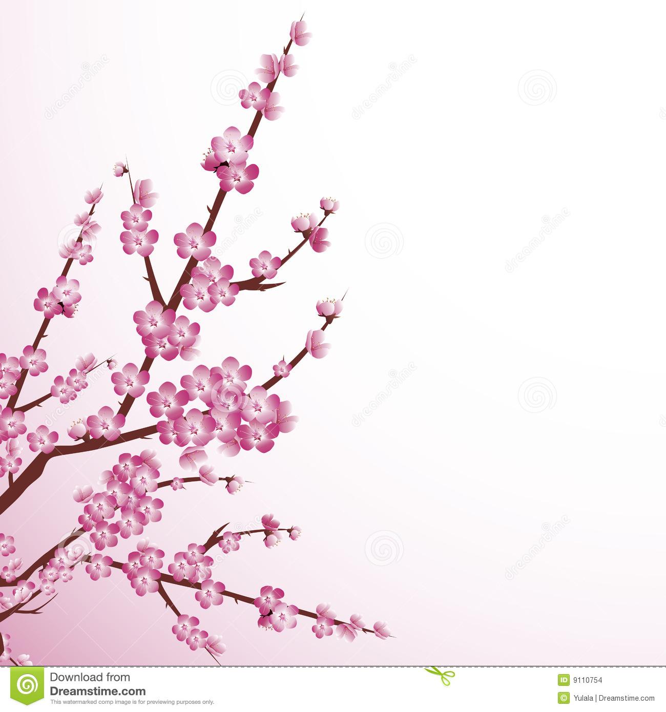 Sakura Blossom clipart powerpoint background #13