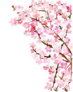 Sakura Blossom clipart tumblr backgrounds #11