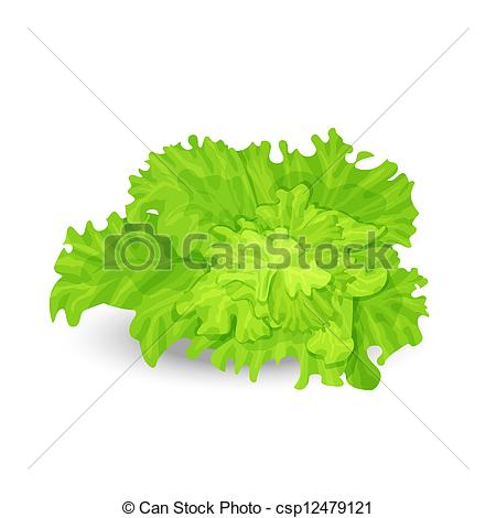 Salad clipart leaf vector Illustration Green Vector Green Illustration