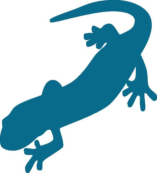 Newt clipart salamander #5