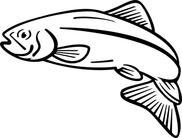Salmon clipart Salmon art 4 at 1