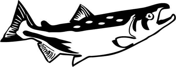Salmon clipart Salmon And Black collection images