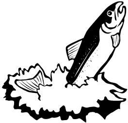 Salmon clipart black and white #15